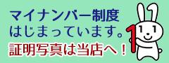 https://www.cas.go.jp/jp/seisaku/bangoseido/